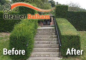 Hedge Trimming Balham