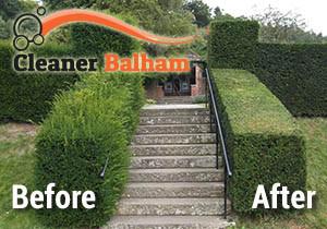 Hedge Trimming Balham
